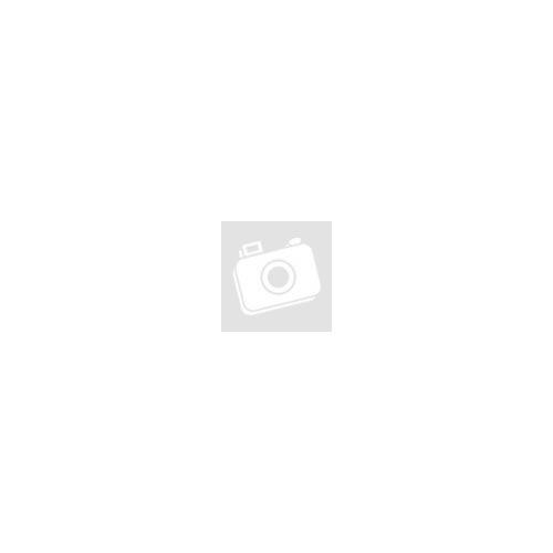 Kinyomópisztoly pisztolyhabhoz MVA-05Orbay